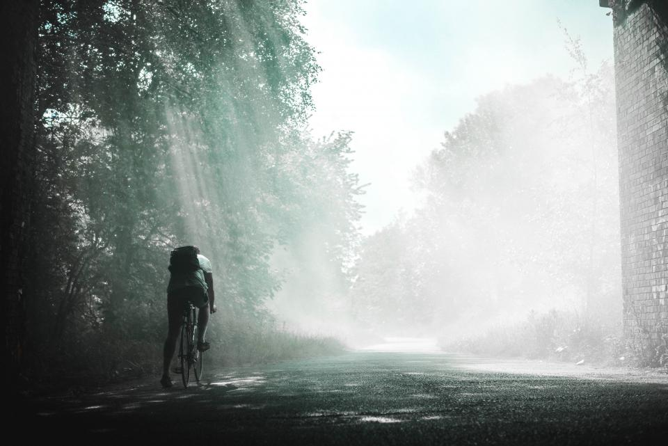 guy man male people cycling bicycle road path trees sun light rays fog black and white fitness