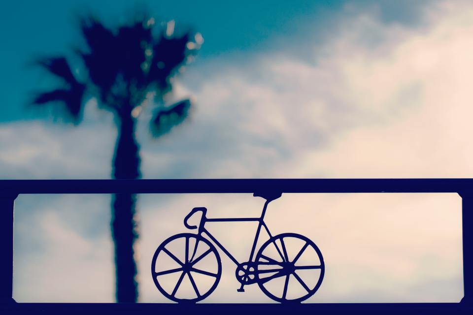 bike bicycle triangular shape wheel blur sky clouds tree plant nature