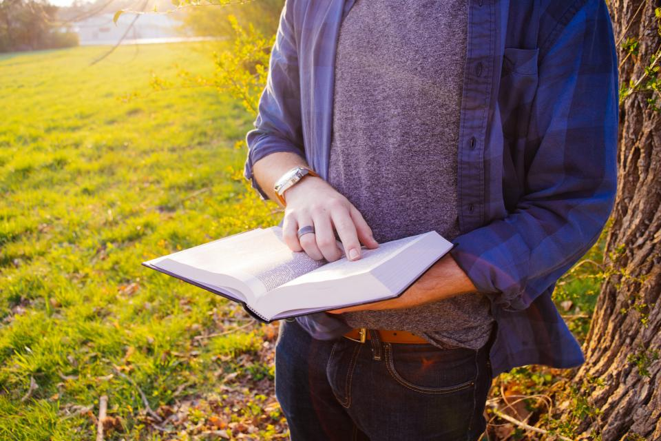 guy student people book reading hands plaid sunset grass tree outdoors park fashion