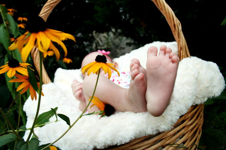 baby feet basket flowers family