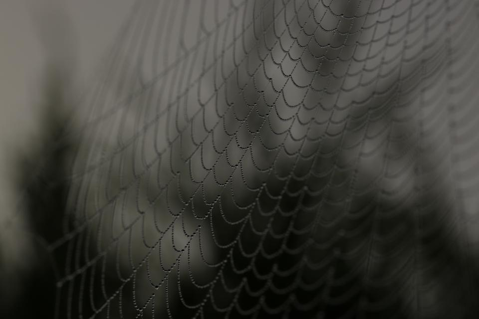 web black and white monochrome rope net