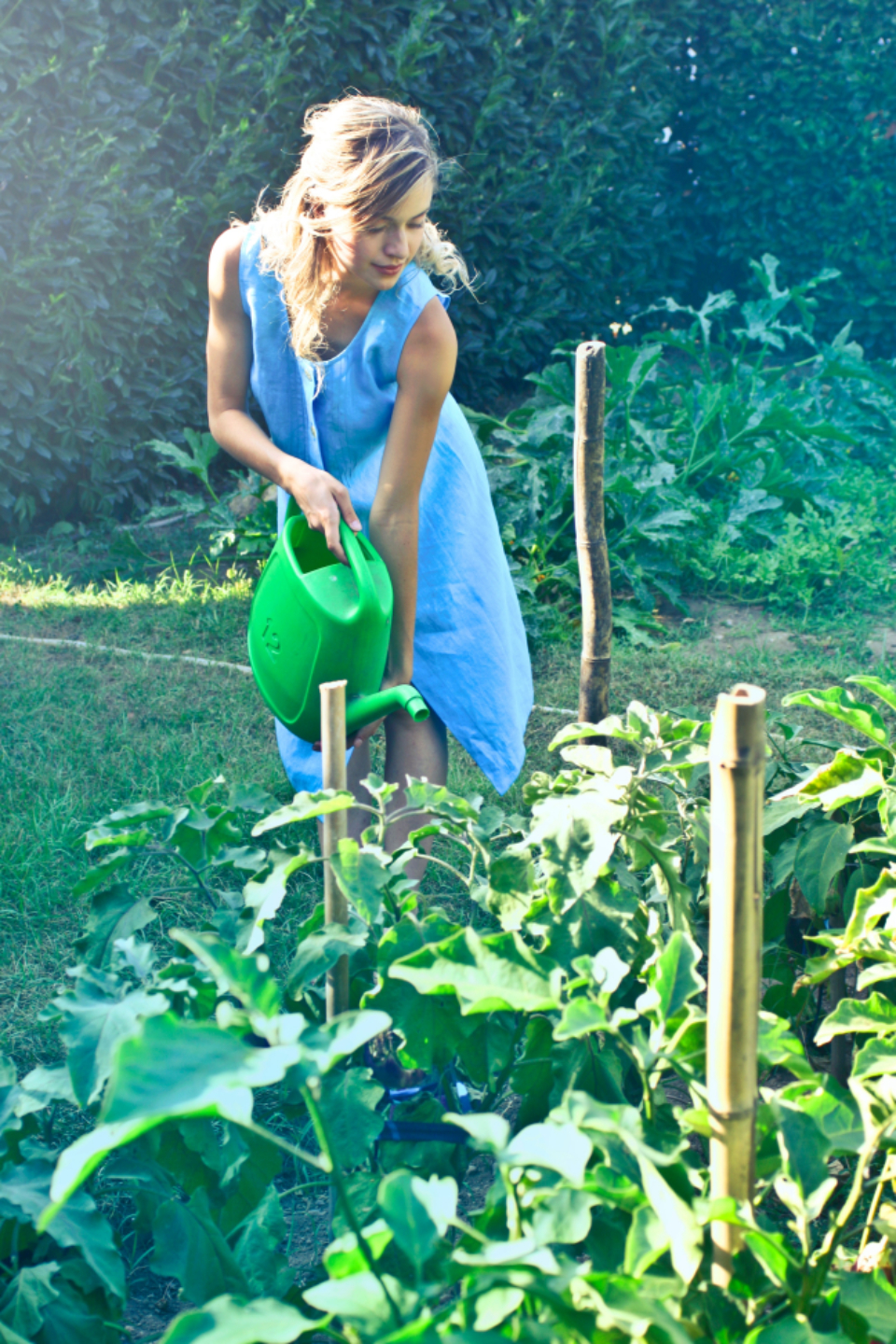 woman blue dress garden yard work plants nature watering can water grow farming