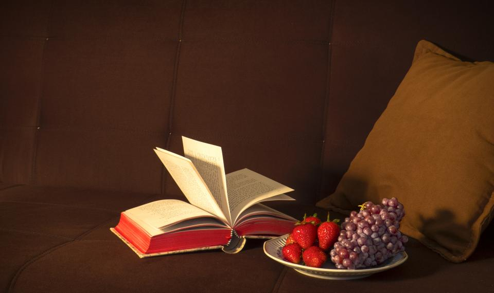 book reading fruits grapes strawberries food healthy couch pillow decor