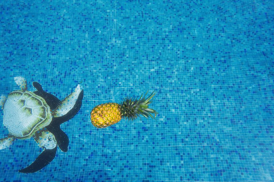 pineapple dessert appetizer fruit juice crop swim pool water blue turtle
