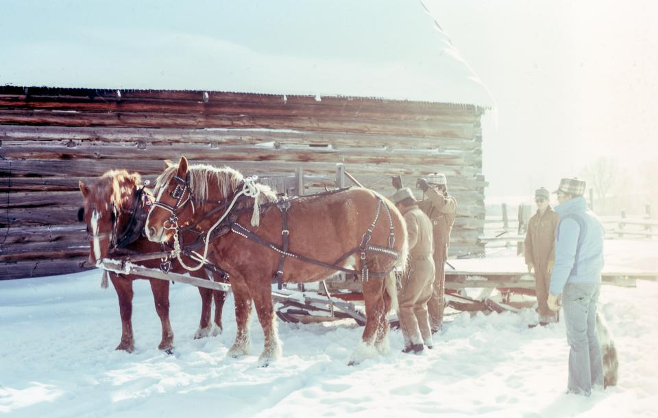 people men field horse animal harness adventure wooden fence snow winter sunny day