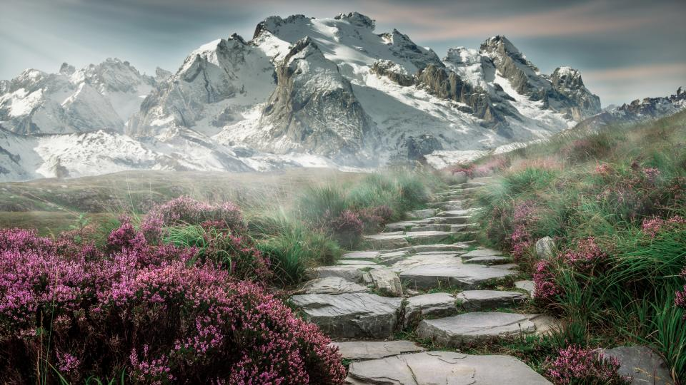 mountain landscape green grass rocks flowers view