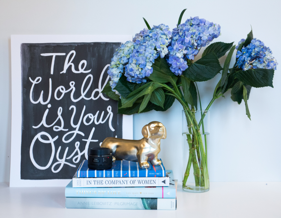 inspirational word art quote business motivating background concept work desk flowers vase office books decor dog table