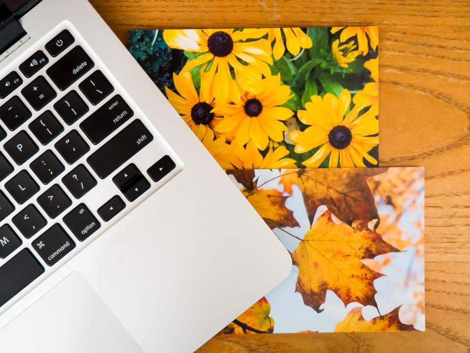 macbook laptop computer technology office desk business pictures photos flowers nature