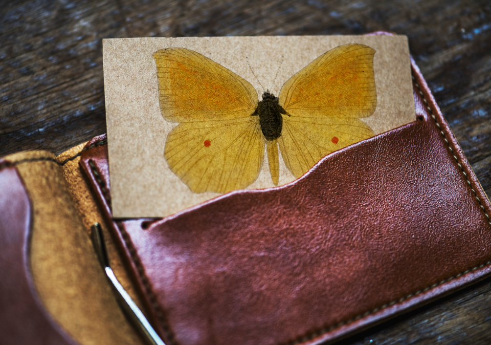 aerial antique card classic closeup copy space design space empty lifestyle mock mockup name card old paper retro space up vintage wallet butterfly drawing art