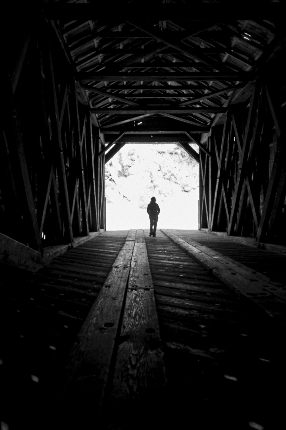 walk woman silhouette wooden bridge alone journey travel monochromatic covered peaceful outdoors moody light tunnel path