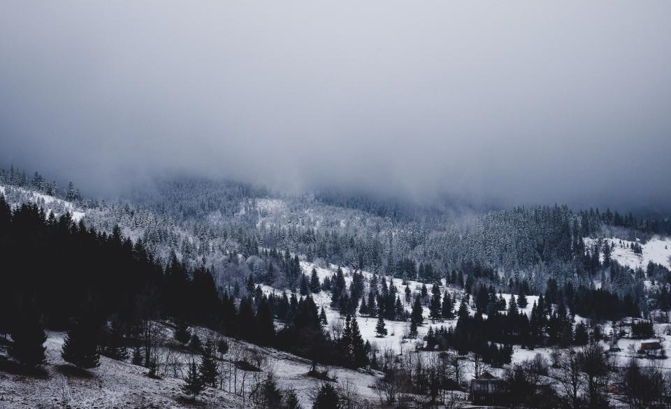 mountain highland cloud fog landscape nature valley trees plant snow winter