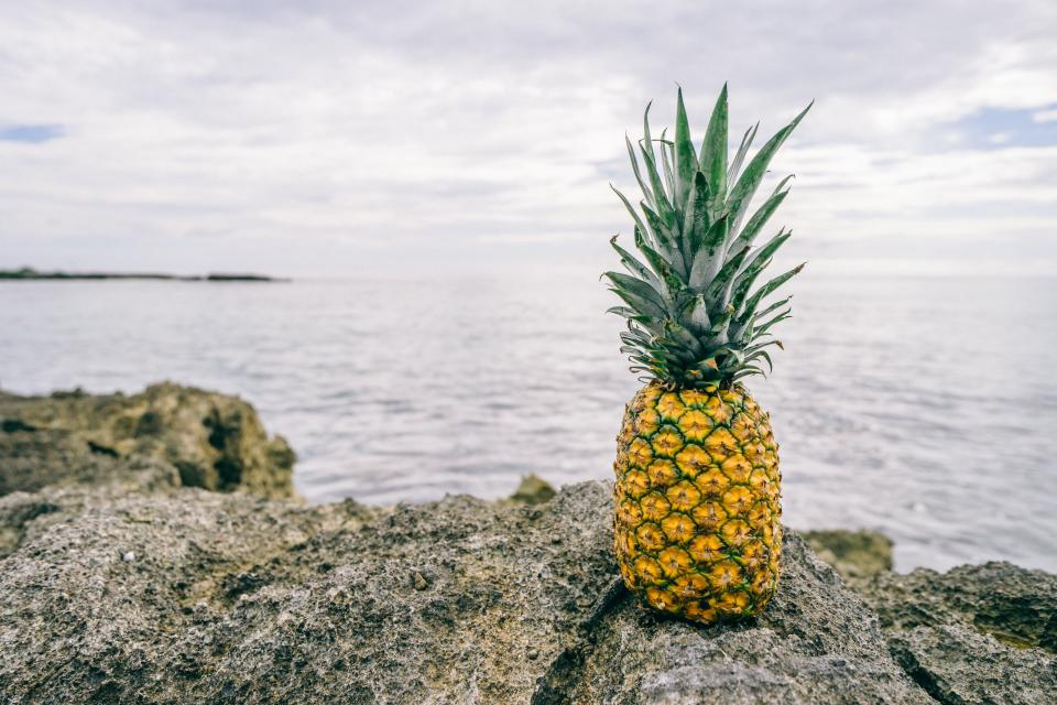 pineapple dessert appetizer fruit juice crop beach ocean sea sand waves clouds sky