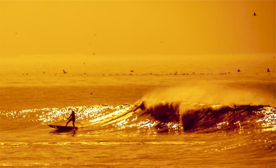 surfer surging waves water ocean sea sports birds sunset