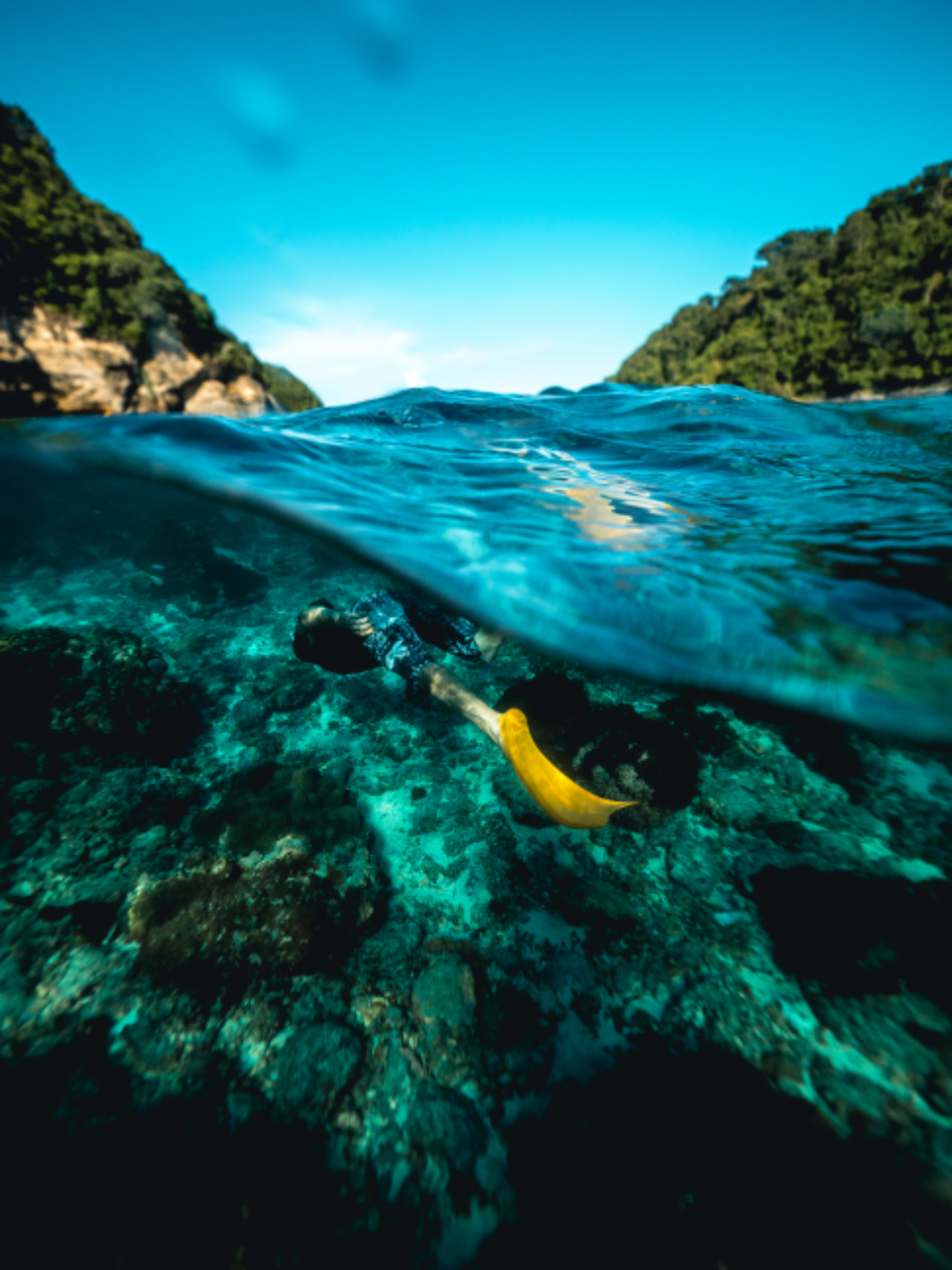 snorkeling ocean travel man yellow fin flipper travel vacation holiday underwater blue sky people