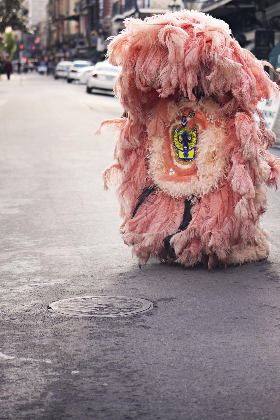 pink costume fur street pavement manhole