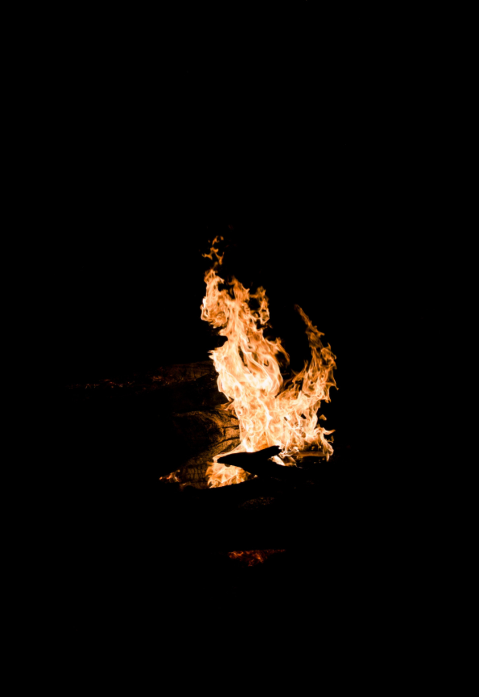 flame fire night black campfire warm blazing burn bonfire burning wood firewood heat