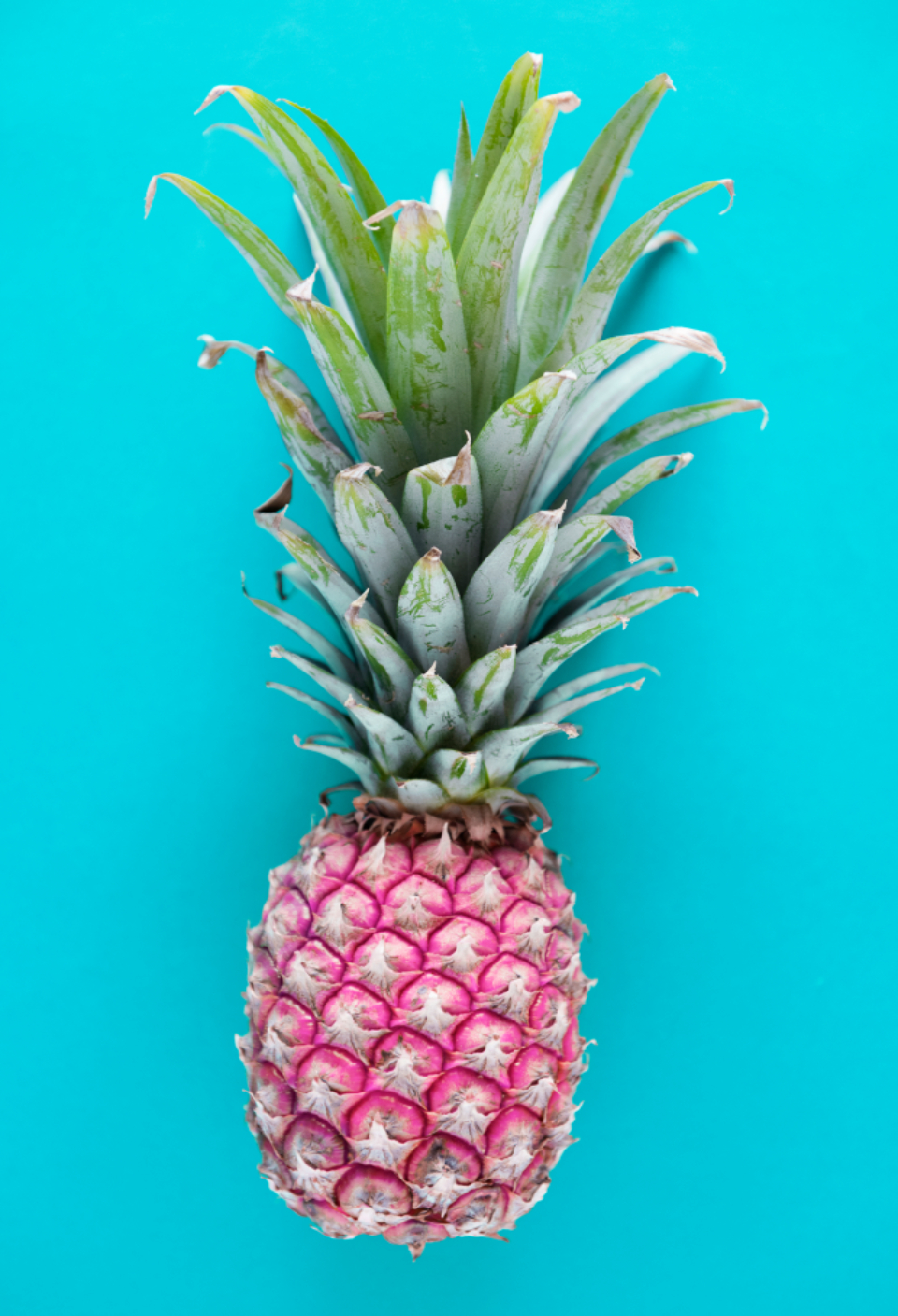 blue background food fresh freshness fruit healthy ingredient isolated juicy natural nature nutrition nutritious organic pattern pineapple raw refreshment ripe season s