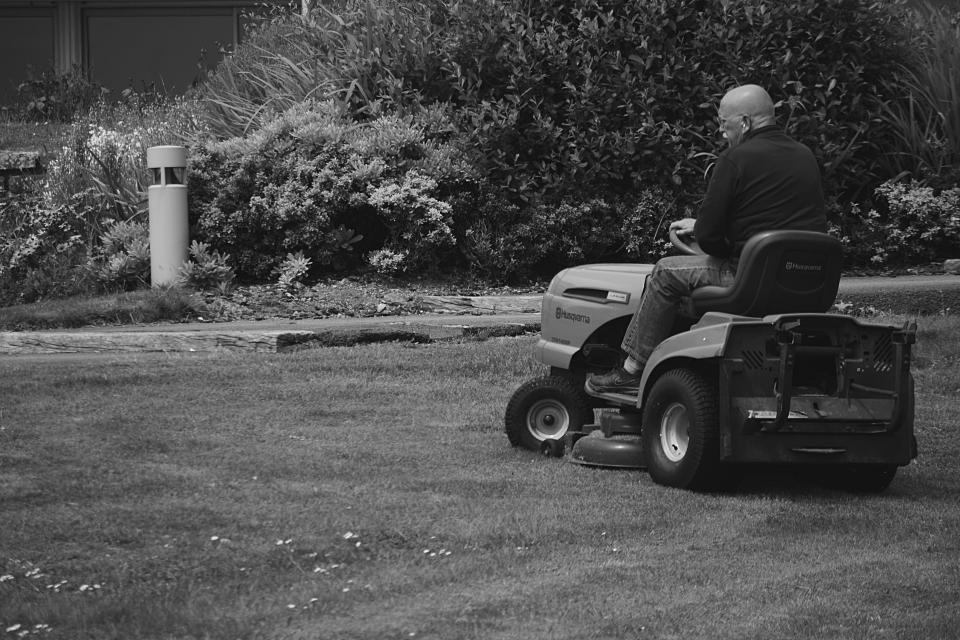 people man old plants grass lawn tractor mower cutting driving working cleaning skin head light post black and white riding