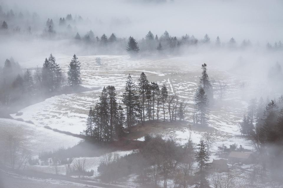 nature landscape field grass trees fog snow winter cold weather travel adventure