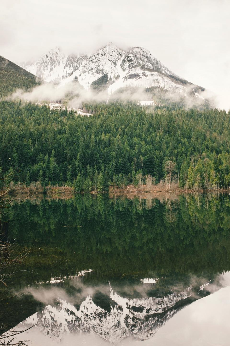 green trees plant nature forest lake water reflection mountain fog snow winter outdoor travel view nature
