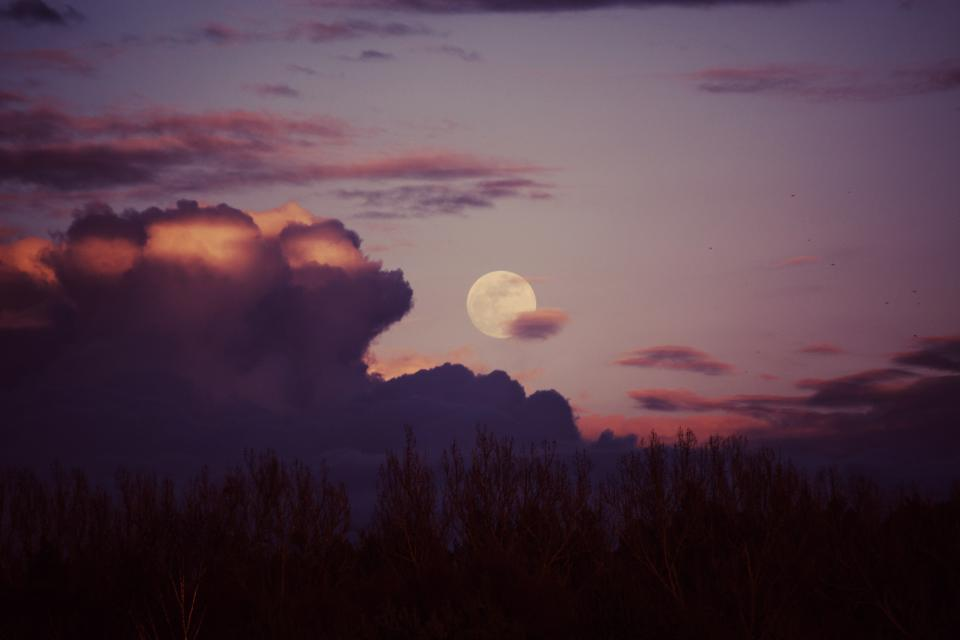 moon sunset dusk sky trees clouds forest woods nature landscape night evening