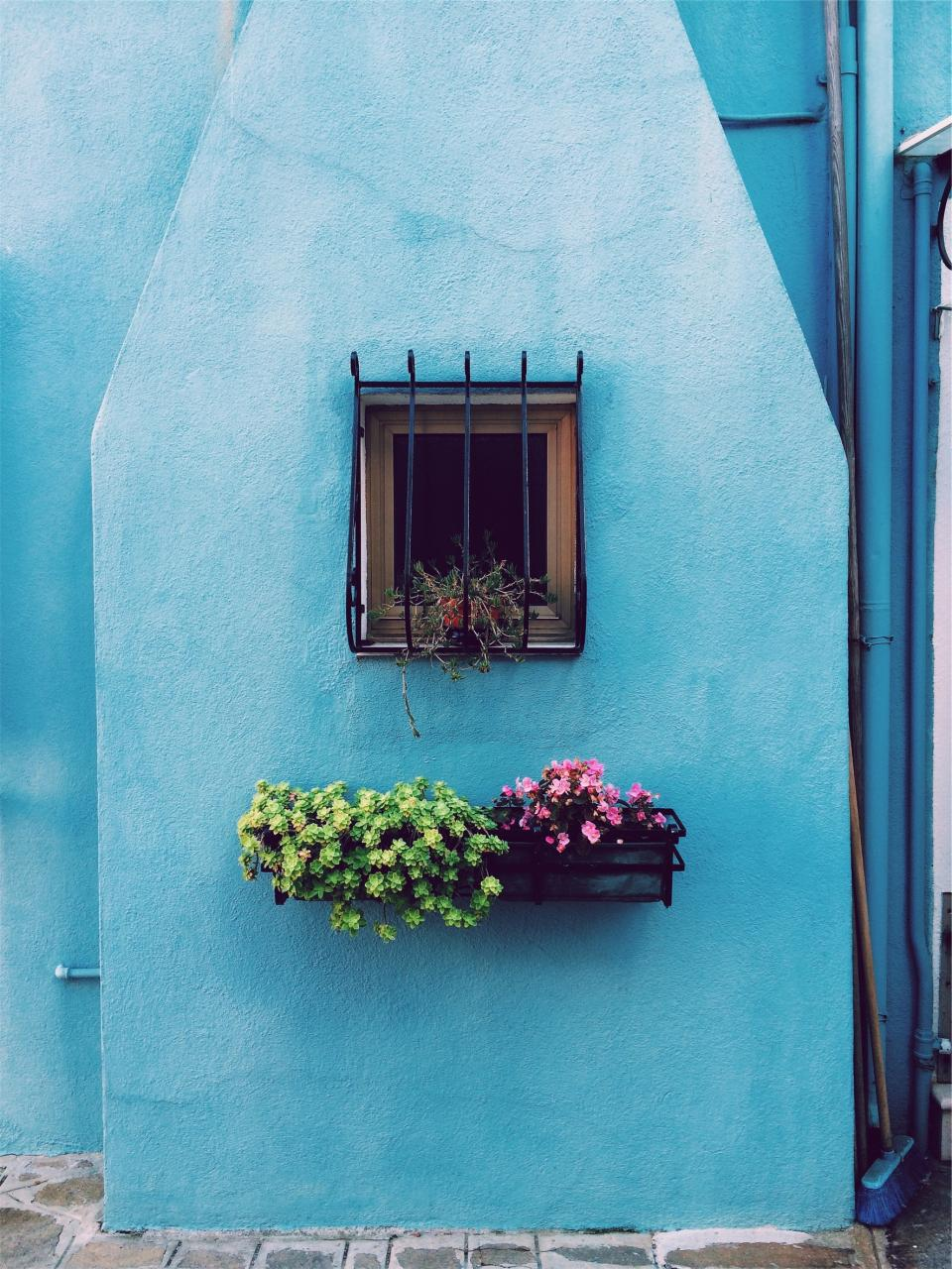 flowers basket pots window bars blue wall house