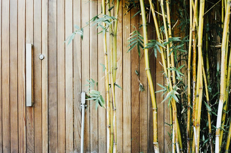 wood bamboo gate lock branches leaves