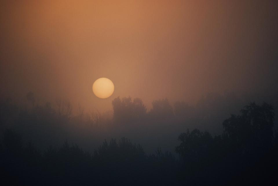 sunrise morning dawn sky foggy trees nature forest woods haze landscape