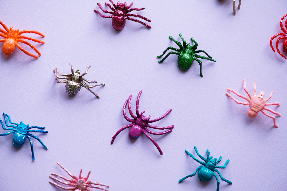 animal artificial bug childish close up close-up closeup colorful crawly creature creepy fake frightening halloween holidays horror insect leg legs many multi colored object october party pattern plastic play purple