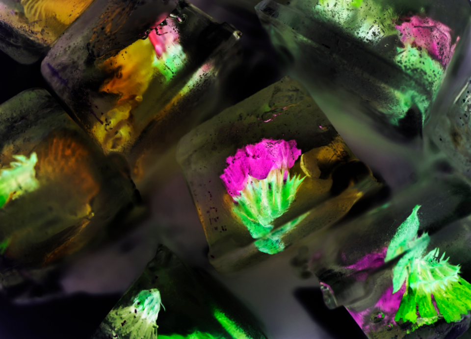 abstract art artisan artsy background bartending beautiful closeup cold cool craft creative creativity crystal cube culinary decor decoration detail drink edible effect floral flower freeze fresh freshness frozen holiday ice iced icy in