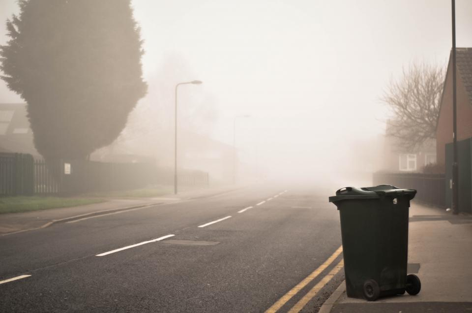 road street tree plant outdoor foggy trash bin can clean
