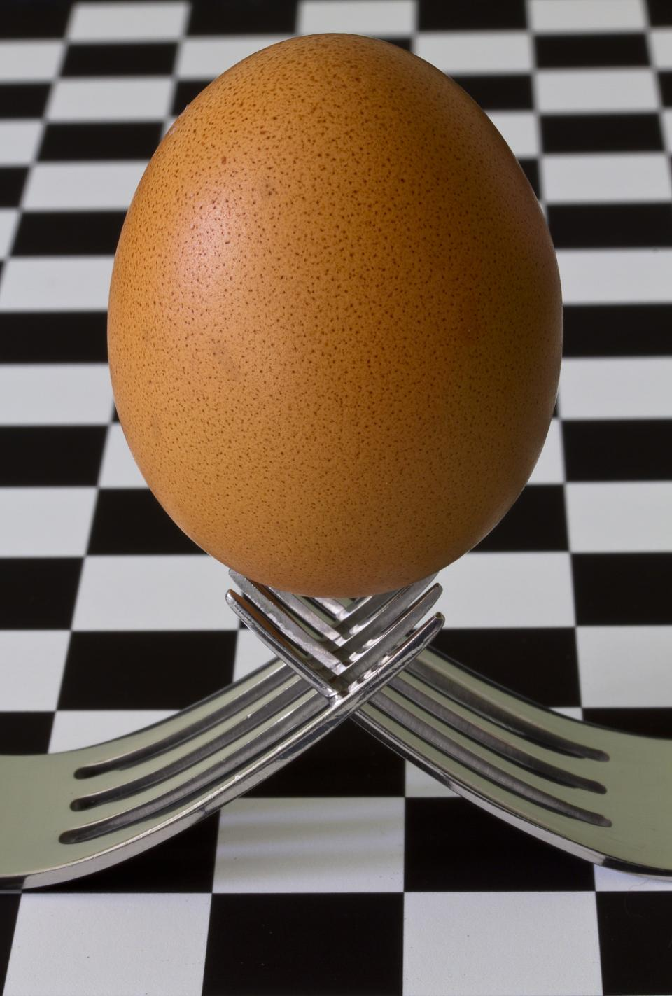 still items things forks egg balance equilibrium checkered table photography