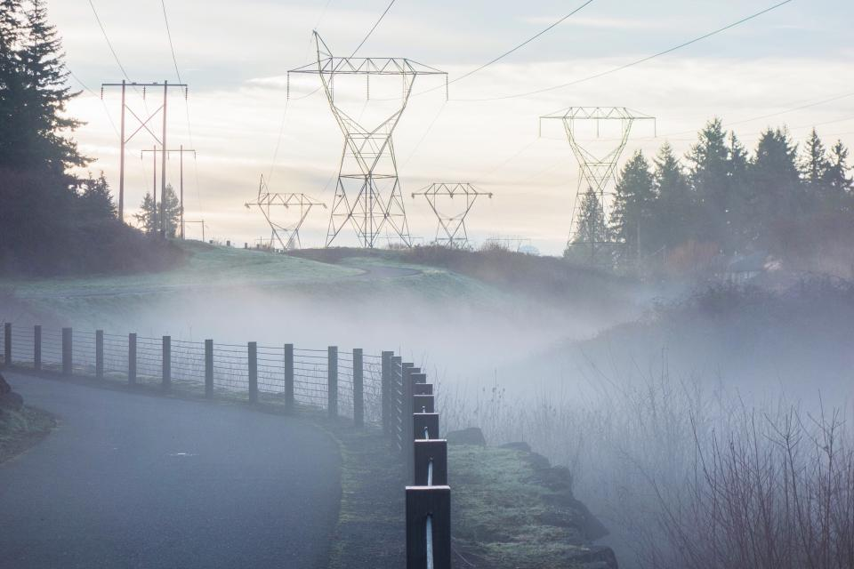 nature landscape transmission line electricity fog fence wire outdoor trees sky