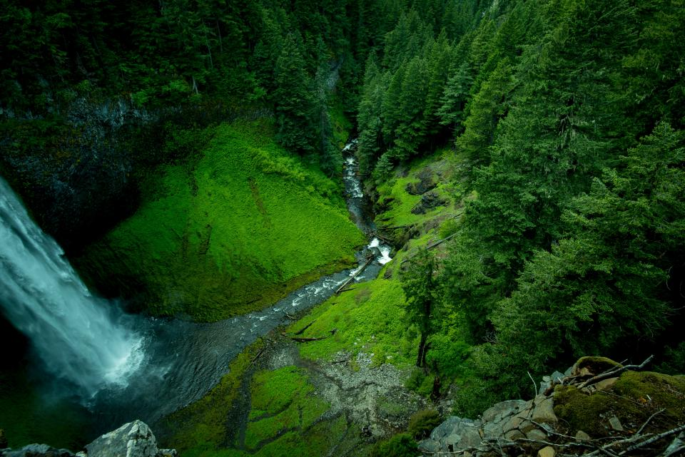 waterfalls river water stream trees forest green grass moss plants wood rocks nature landscape