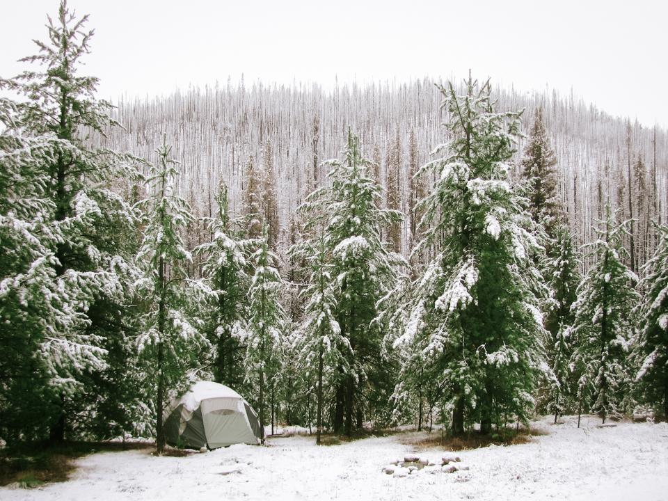 nature landscape forests trees snow blanket camp tent sky white