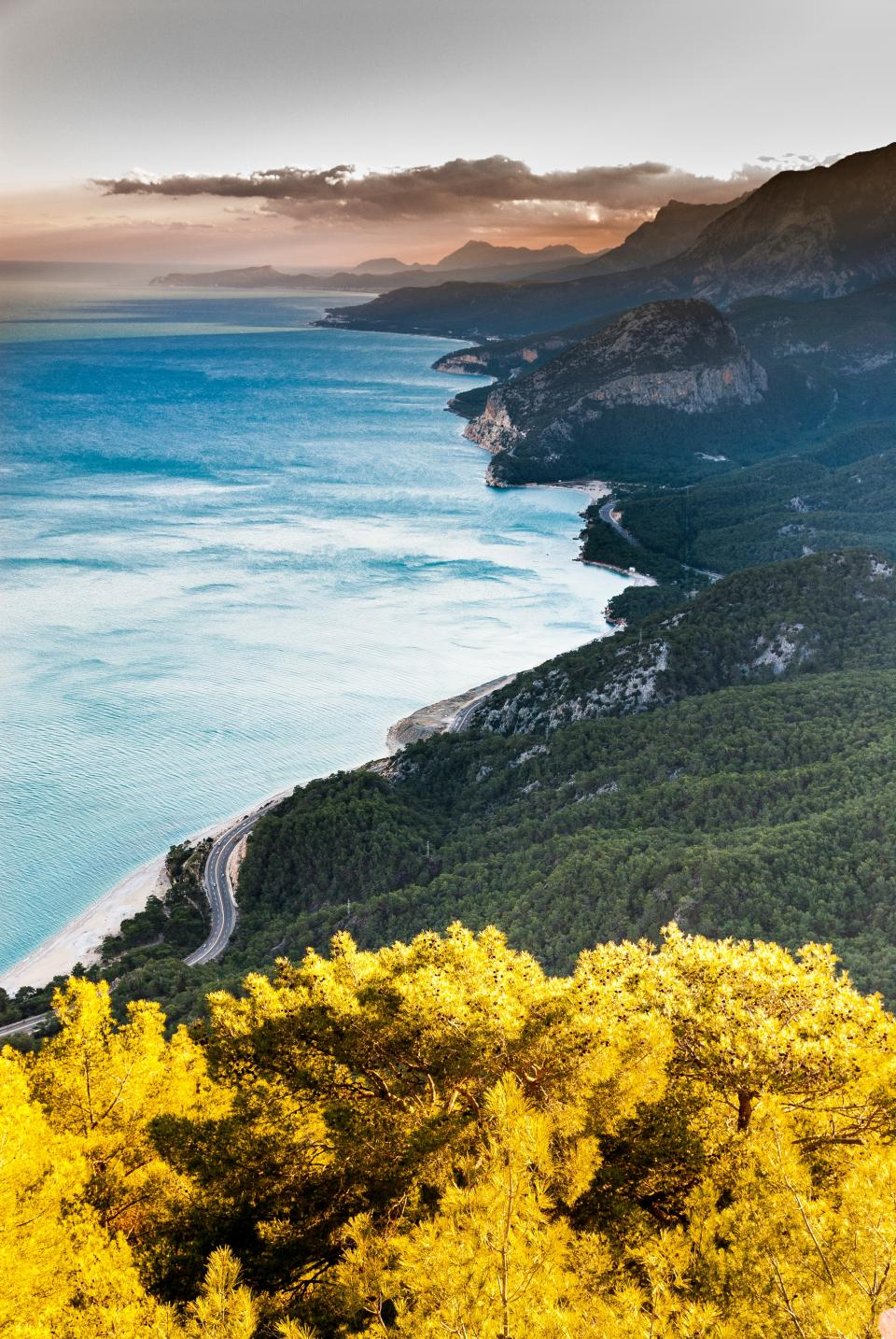 yellow plant trees nature mountain highland road path forest sea ocean blue water beach coast shore nature landscape view clouds sky
