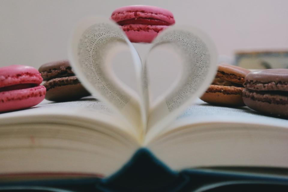 book read study cookie macaroon sweets pastry dessert