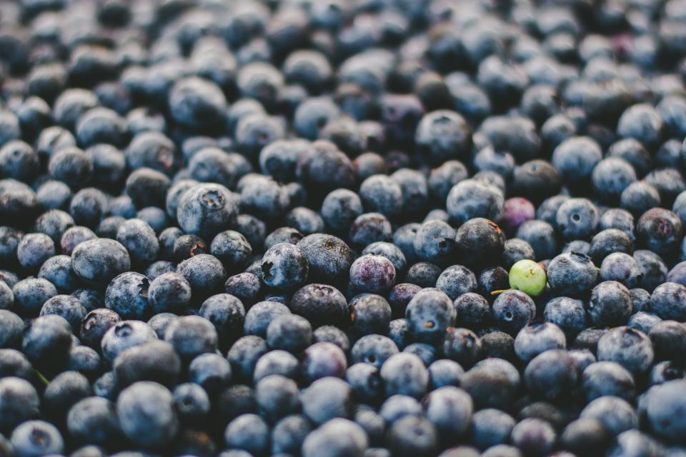 fruit round blueberries green violet berry food harvest farm sweets dessert