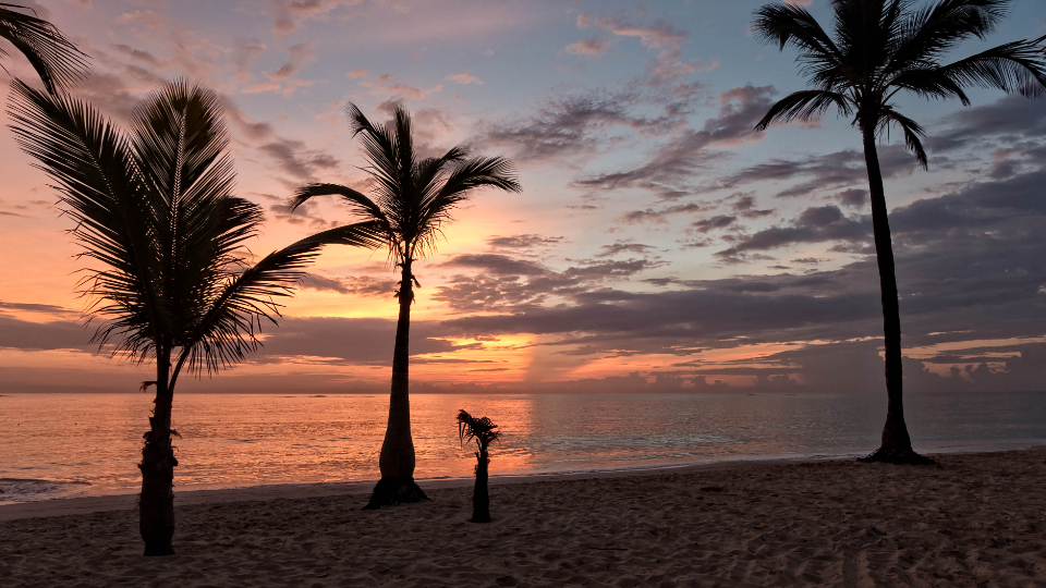 tropical beach sunset vacation sand water ocean sea sky clouds palm trees travel tourism dusk beautiful scenic relax coast shore