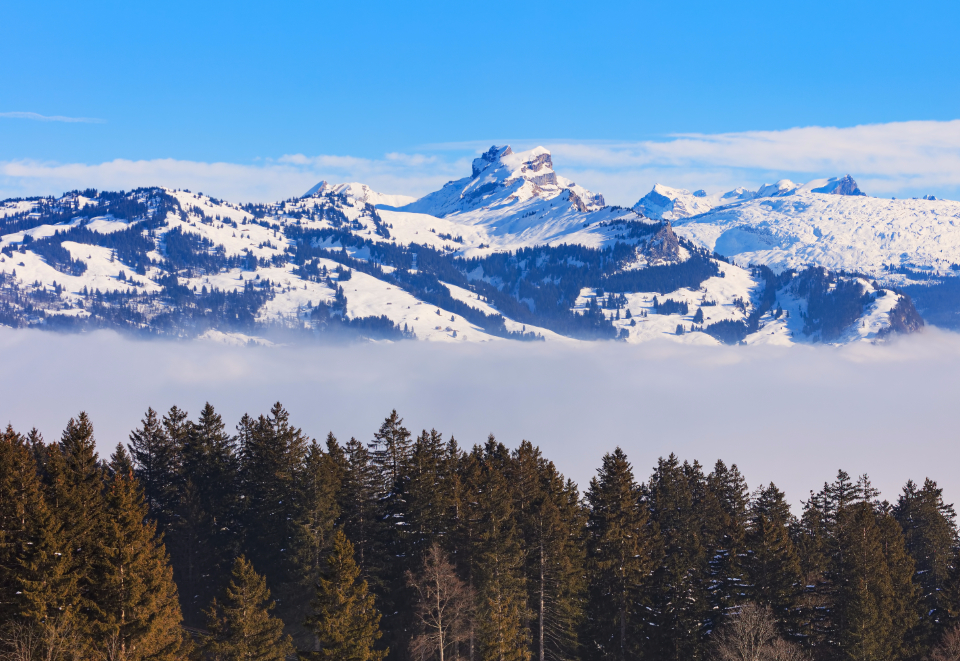Switzerland Schwyz winter wintertime view landscape tree spruce snow cloud fog white Fronalpstock Alps Swiss Alps summit peak mountain nature sky blue Swiss Europe European