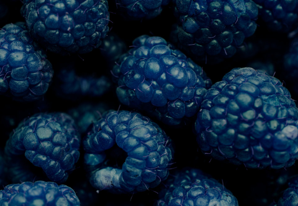 background berry blackberry blue closeup delicious dessert detox diet effect energy food fresh freshness fruit harvest healthy ingredient juicy macro name natural nature nutrition nutritious organic pattern raspberry