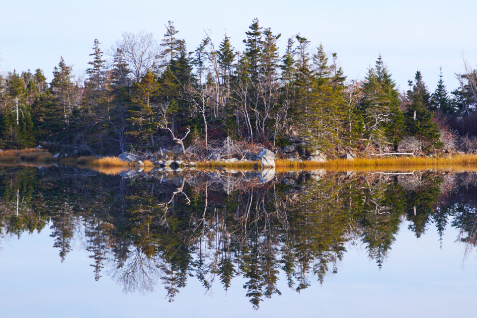 lake reflection landscape shore trees forest sky nature natural rocky mirror water pond season day scenic