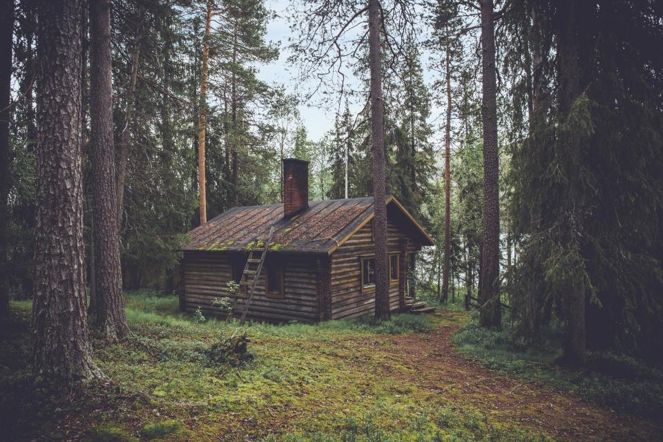 wood logs cabin cottage rural countryside forest woods trees grass nature outdoors adventure camping lake