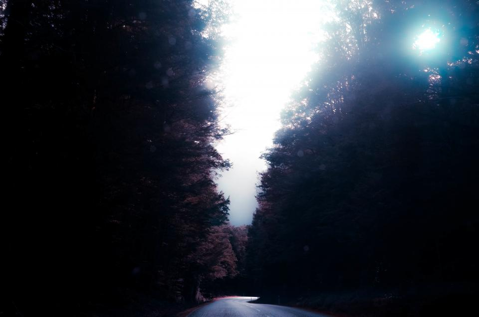 nature road paths streets forests sky clouds fog light leaks peek bokeh