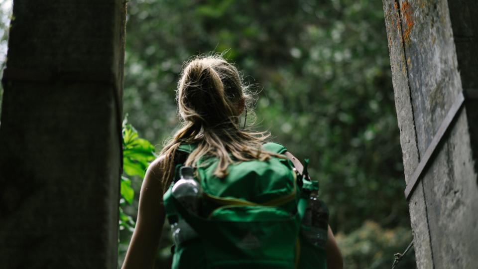 people woman back pack travel adventure wood green leaves trees hike climb