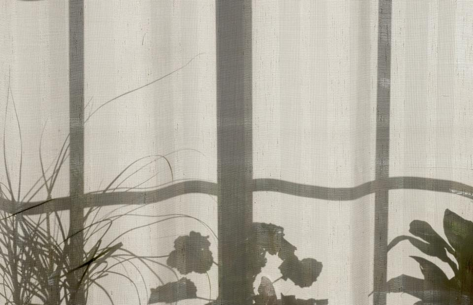house home plants curtain window shadow