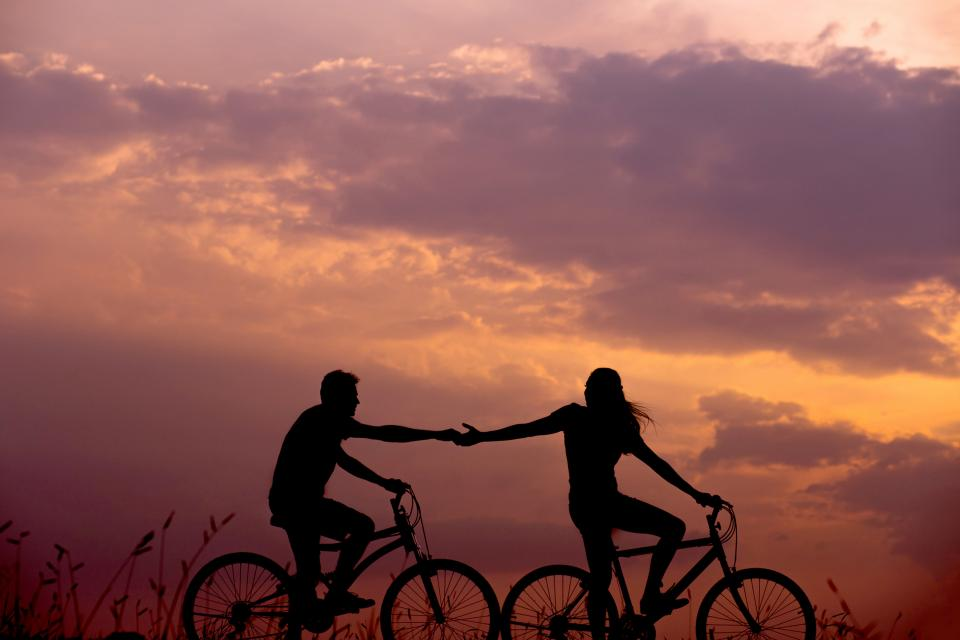 silhouette bike bicycle couple holding hands leaves grass nature clouds sunset sky people guy girl love