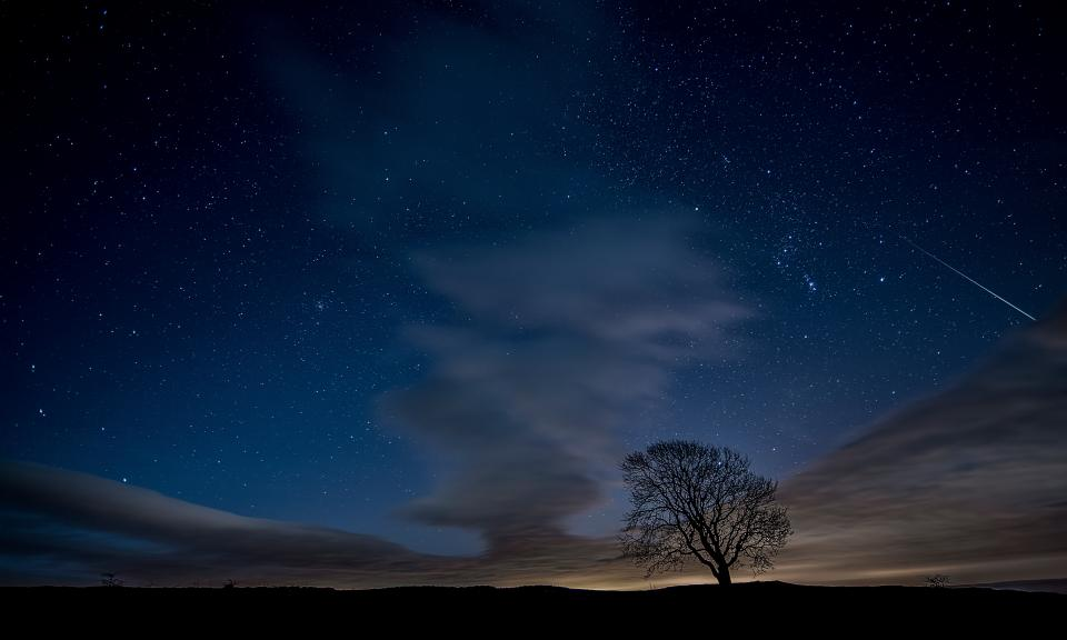 tree plant field farm cloud sky nature outdoor stars silhouette dark