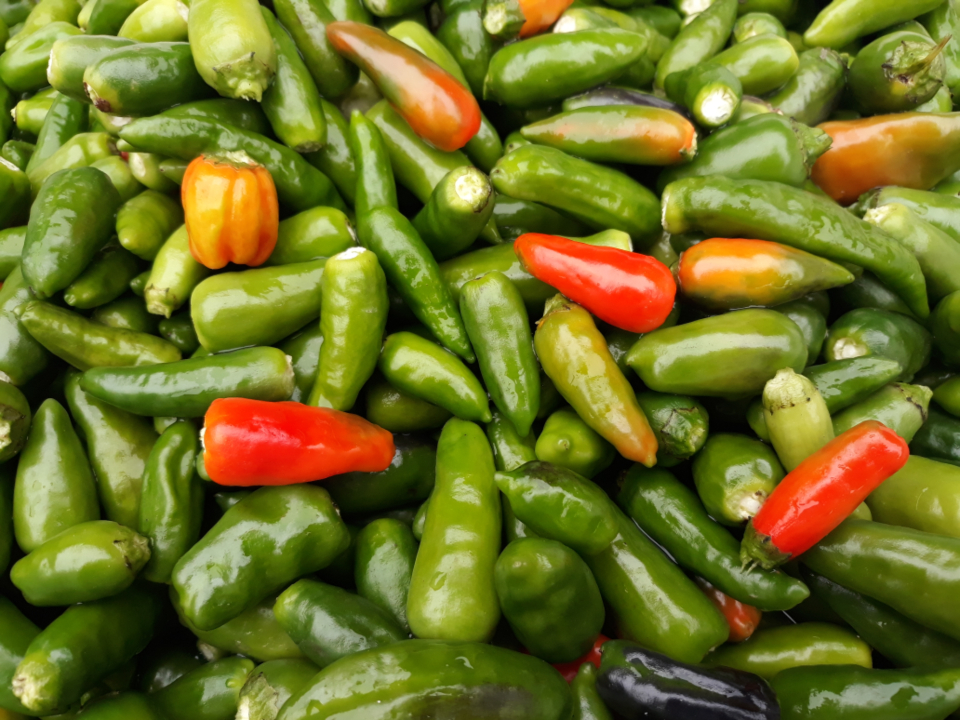 food peppers market fresh organic ingredients red green top