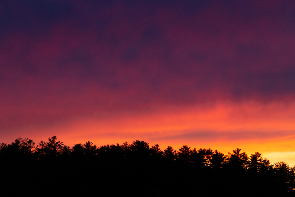 sunset clouds trees silhouette nature outdoors dusk sunlight sky warm scenic forest glow environment vibrant horizon